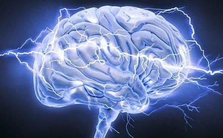Ученые испытывают новые имплантаты для головного мозга