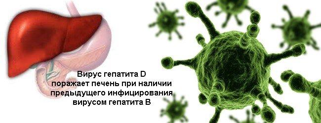 Гепатит D — симптомы и лечение, фото и видео