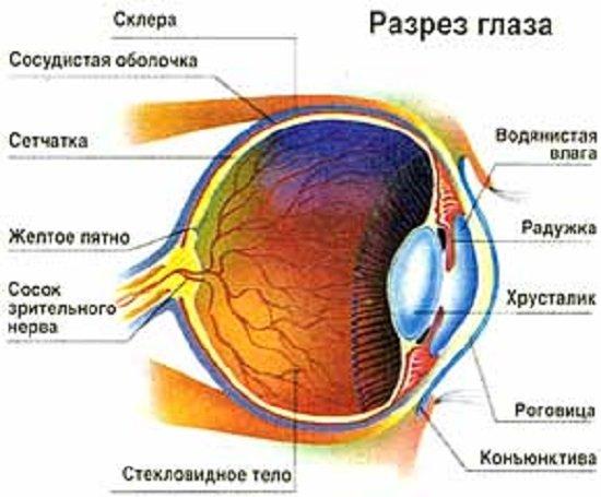 Глаукома — симптомы и лечение