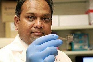 Регенерация органов, тканей и нервов в одном чипе