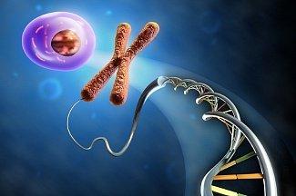 Клеточная смерть, воспаление и рак: наше здоровье в опасности?
