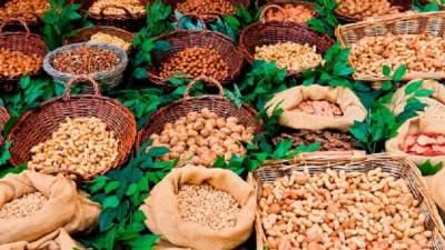 Диетологи напомнили, какие орехи помогут похудеть