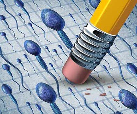 Ученые обнаружили потенциальное лекарство для миллионов бесплодных мужчин