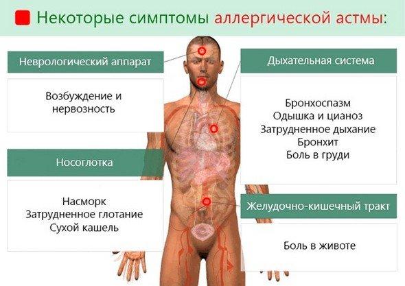 Аллергическая астма — симптомы и лечение