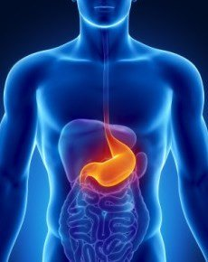 Народные средства от язвы желудка и двенадцатиперстной кишки