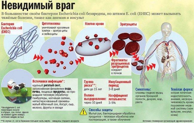 Кишечная инфекция — симптомы и лечение