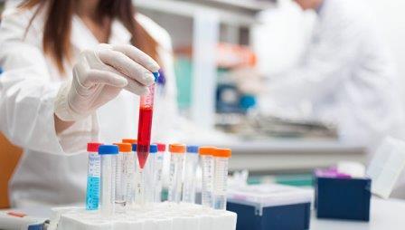 Ученые заблокировали с помощью антибиотиков возможность раковых клеток получать энергию