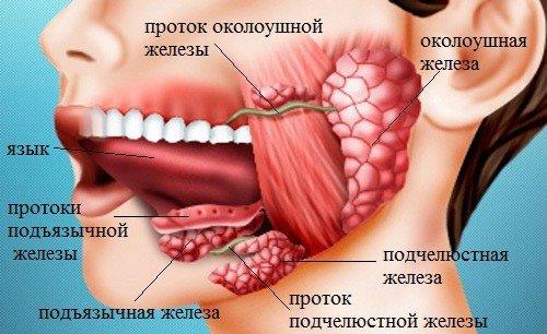 Сиаладенит — симптомы и лечение