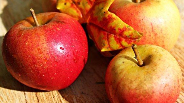 К Яблочному Спасу: шесть лечебных и вкусных рецептов из яблок и орехов