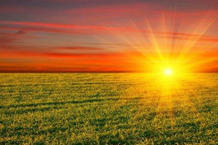 Ученые: Солнце скоро убьет всех людей