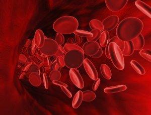 Народные средства для поднятия гемоглобина: какие продукты