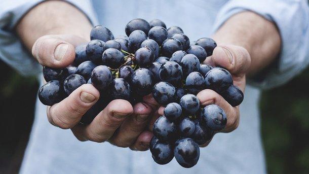 Назван лучший фрукт для очищения и омоложения организма