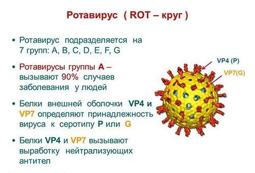 Ротавирусная инфекция у детей — симптомы и лечение, фото и видео