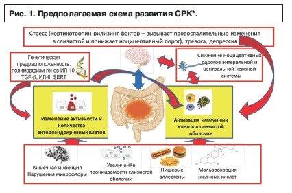 Синдром раздраженного кишечника у детей.