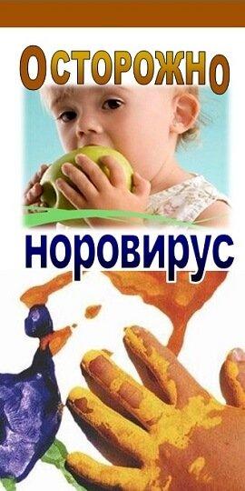 Норовирус у детей – симптомы и лечение, фото и видео.