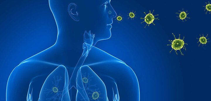 Пневмоцистная пневмония – симптомы и лечение, фото и видео