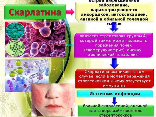 Скарлатина у детей – симптомы и лечение, фото и видео.