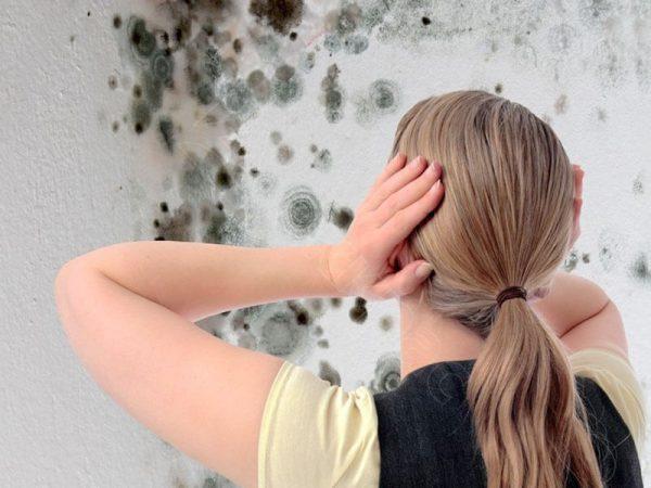 Аллергия на плесень у детей и взрослых.