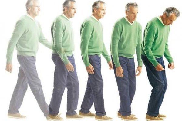 Факторы роста помогут в лечении болезни Паркинсона
