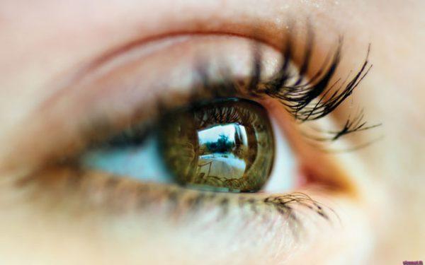 Анофтальм – симптомы и лечение, фото и видео.