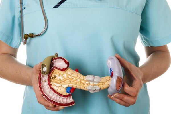Имплантат с клетками поджелудочной железы лечит сахарный диабет