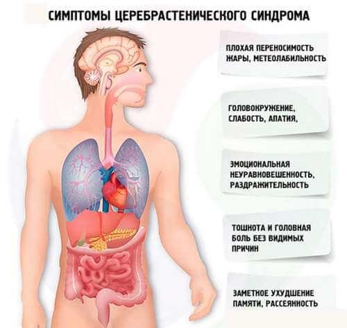 Церебрастенический синдром – симптомы и лечение, фото и видео.