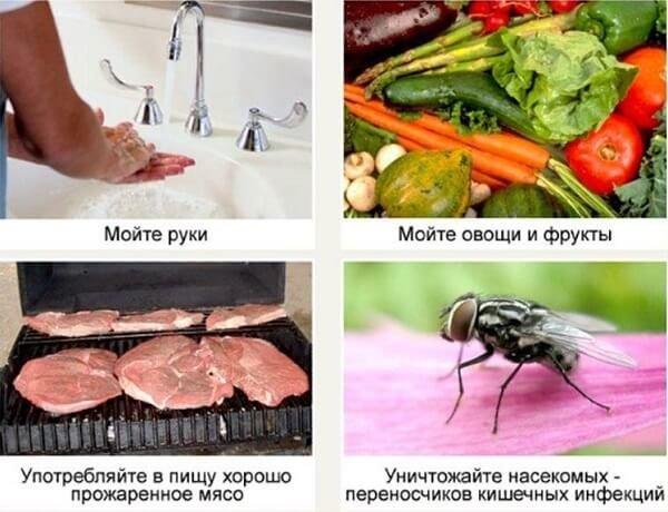 Пищевая токсикоинфекция – симптомы и лечение, фото и видео.