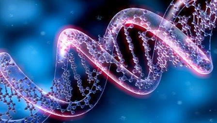 Нестандартные структуры ДНК станут наноконтейнерами для лекарств