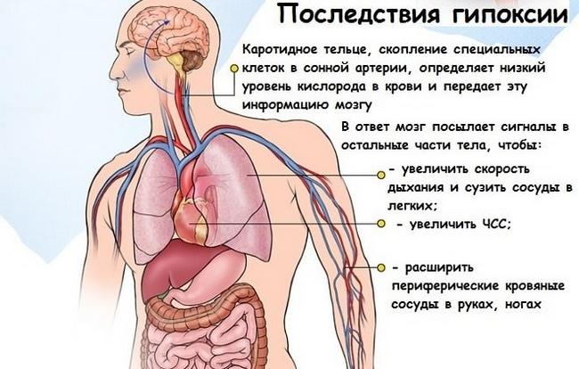 Горная болезнь – симптомы и лечение, фото и видео