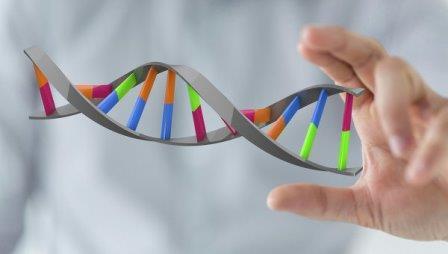 Успешно прошли клинические испытания еще одного метода генной терапии