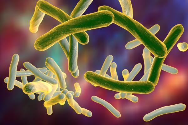 Микобактериоз – симптомы и лечение, фото и видео
