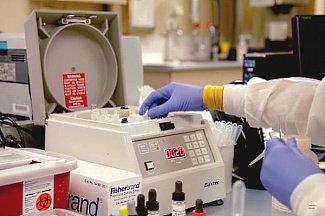 Бактериофаг придет на смену антибиотикам