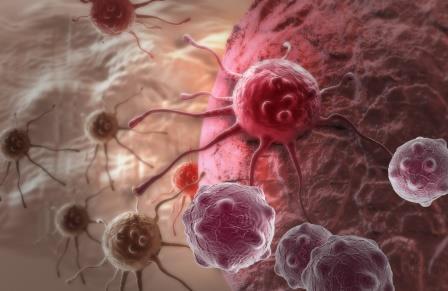 Найден способ заблокировать распространение четырех видов рака
