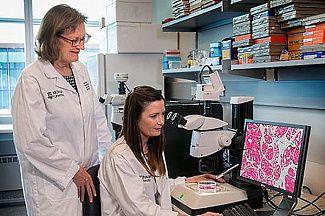 Новые лекарства от рака простаты станут доступней