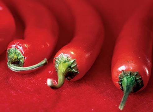 Перца стручкового плоды — инструкция по применению, цена