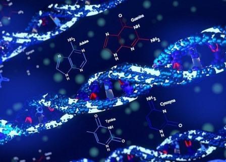 Генная терапия поможет преодолеть кокаиновую зависимость