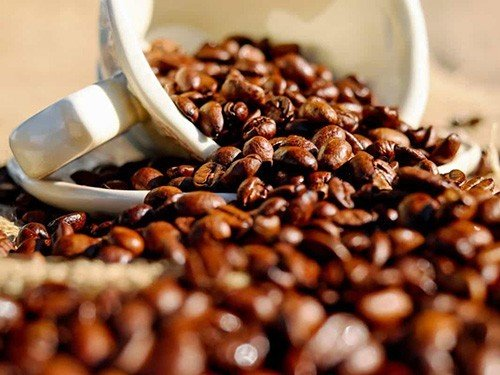 Кофеин продлевает жизнь почечным больным