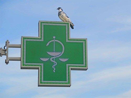 Большинство пациентов, имеющих право на льготные лекарства, покупает их самостоятельно