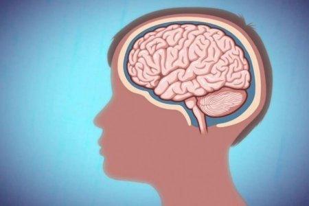 Удаление аппендикса снижает риск болезни Паркинсона