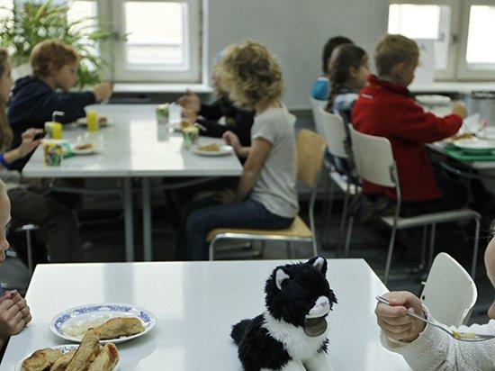Как работает система питания в школах