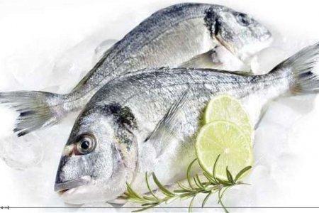 Любители морской рыбы живут дольше