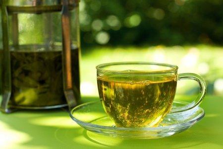 Зеленый чай: что известно науке об этом напитке