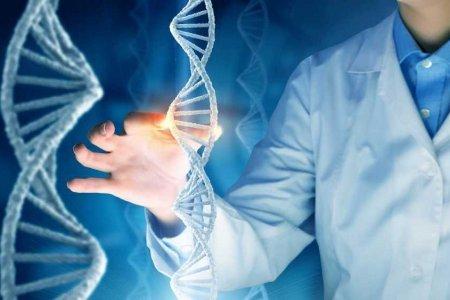 Мать троих детей узнала, что биологически приходится им тетей