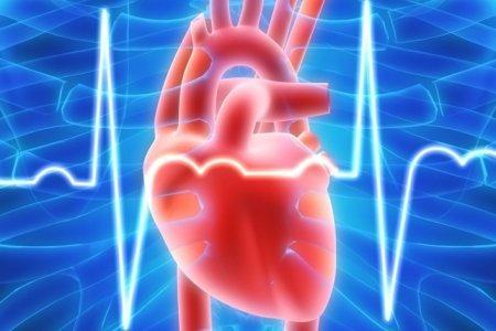 Алкоголь в умеренных количествах продляет жизнь сердечникам