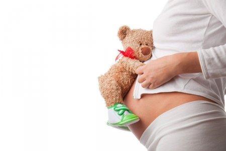 Успешно завершился эксперимент по пересадке матки от умершего донора