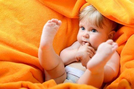 В коре мозга беременных происходят изменения