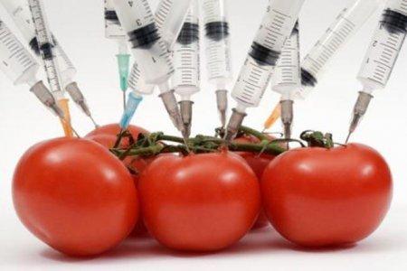 ГМО: что это такое и насколько безопасно