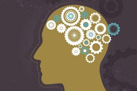 Появилась игра, способная улучшить работу мозга