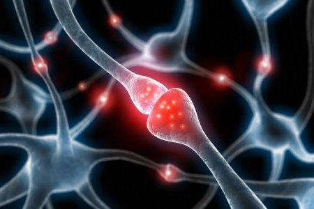 Депрессия ускоряет старение мозга