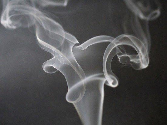 На Украине предложили легализовать марихуану